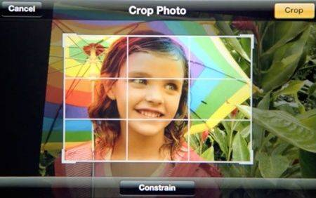crop-photo-1