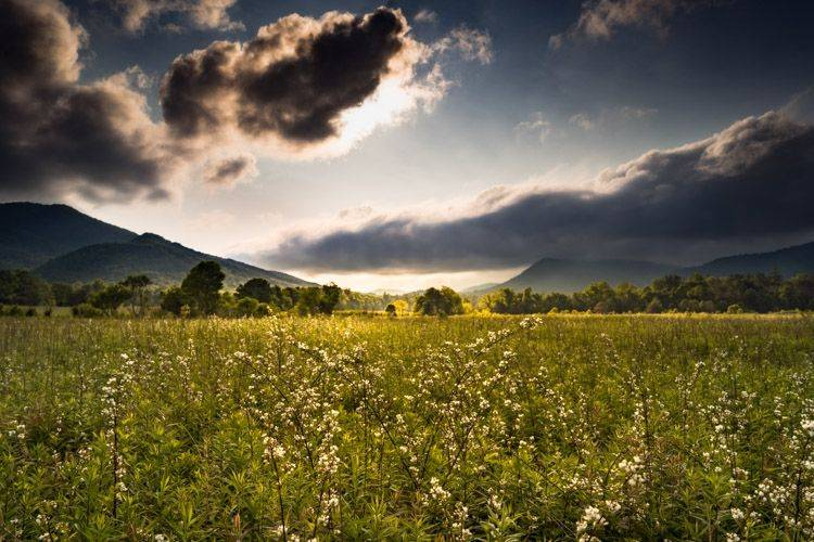 自然风景照 Field
