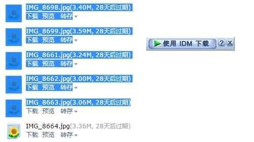 IDM 批量下载QQ邮箱附件 (5)